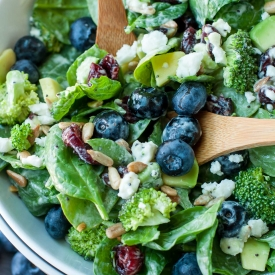 Blueberry-broccoli-spinach-salad-poppyseed-ranch-dressing-recipe-7143