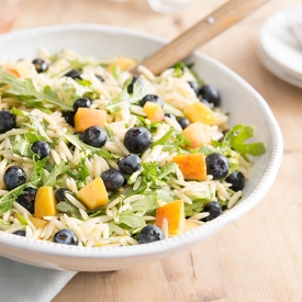 Blueberry-peach-orzo-salad-for-website