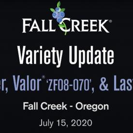 Variety update july15