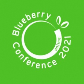 Intl blueberry conference logo