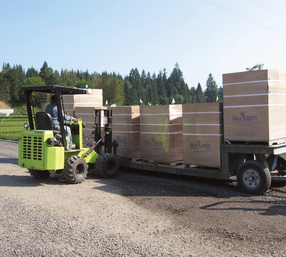 Bin_Boxes_Trailer_Forklift.jpg