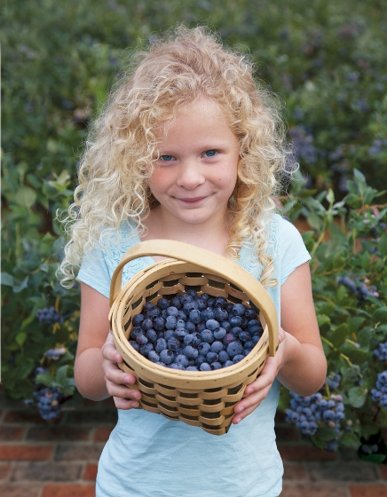 FALL_CREEK_young_girl_with_berries.jpg