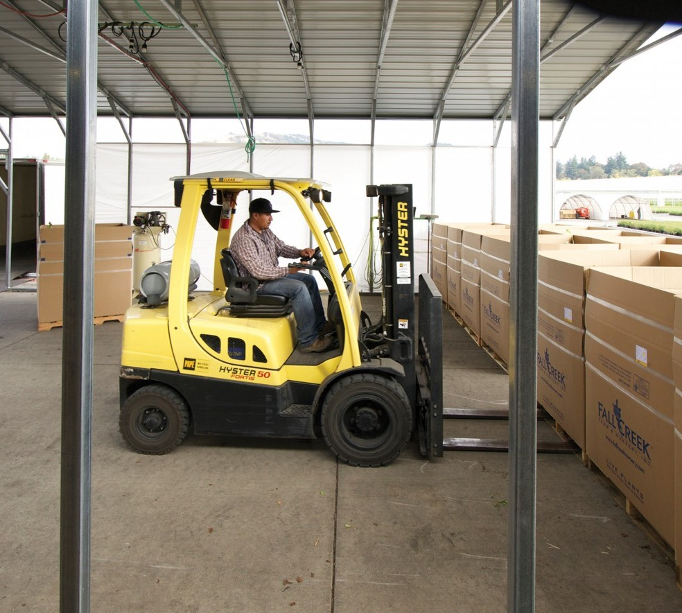 Pedro_on_forklift_pg11.jpg