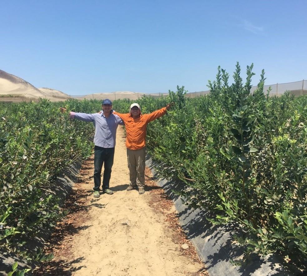 VENTURA_in_farm_planting_in_Peru_-_Spring_2017_FB.jpg