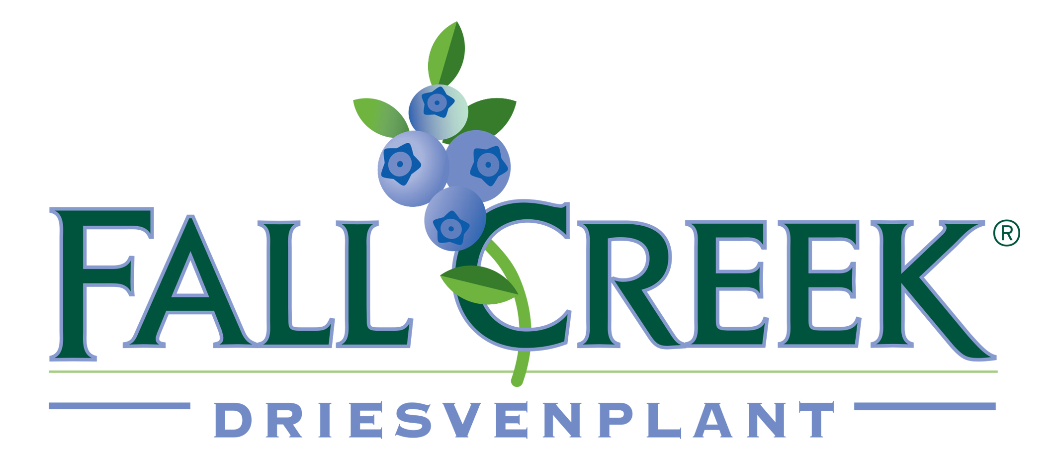The Driessen Family Of Driesvenplant Nursery In Netherlands And Brazeltons Fall Creek Have Been Friends Since 1980 S