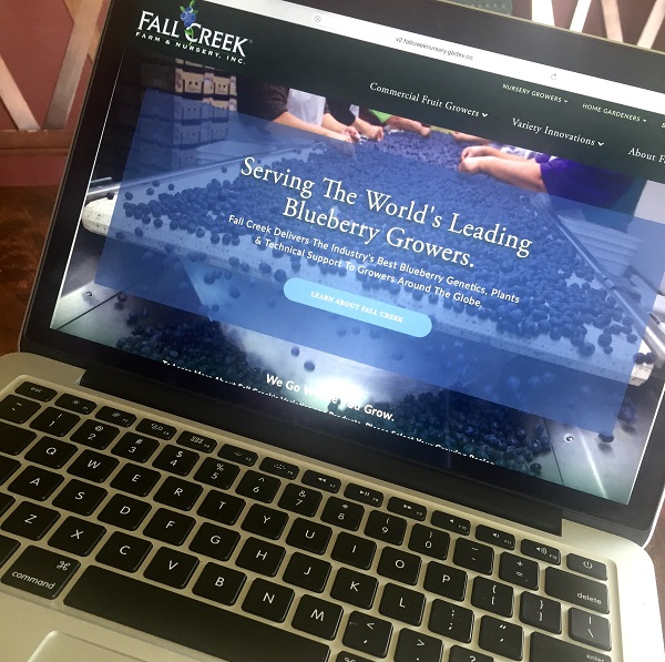 Laptop with Fall Creek's new website on the screen